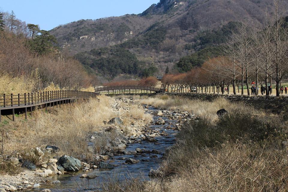 korea, mountain, tour-course