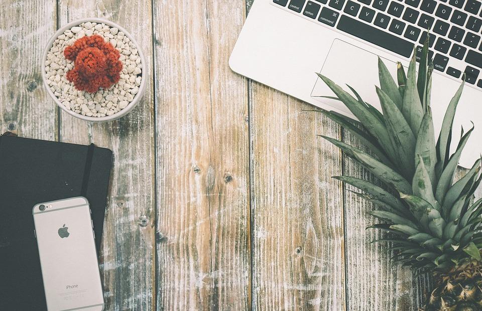 pineapple, laptop, desk