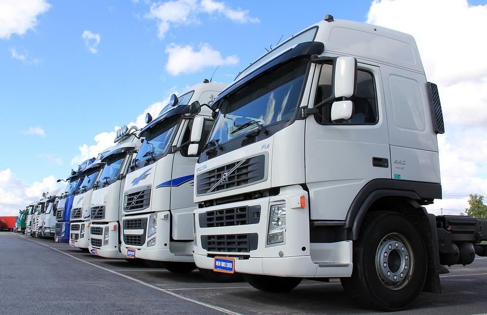 truck, white, vehicle