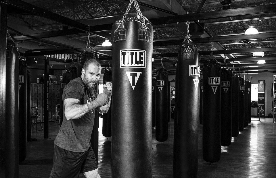 boxer, boxing martial arts, boxing