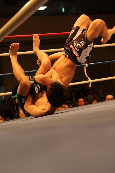 mma, mixed martial arts, shooto