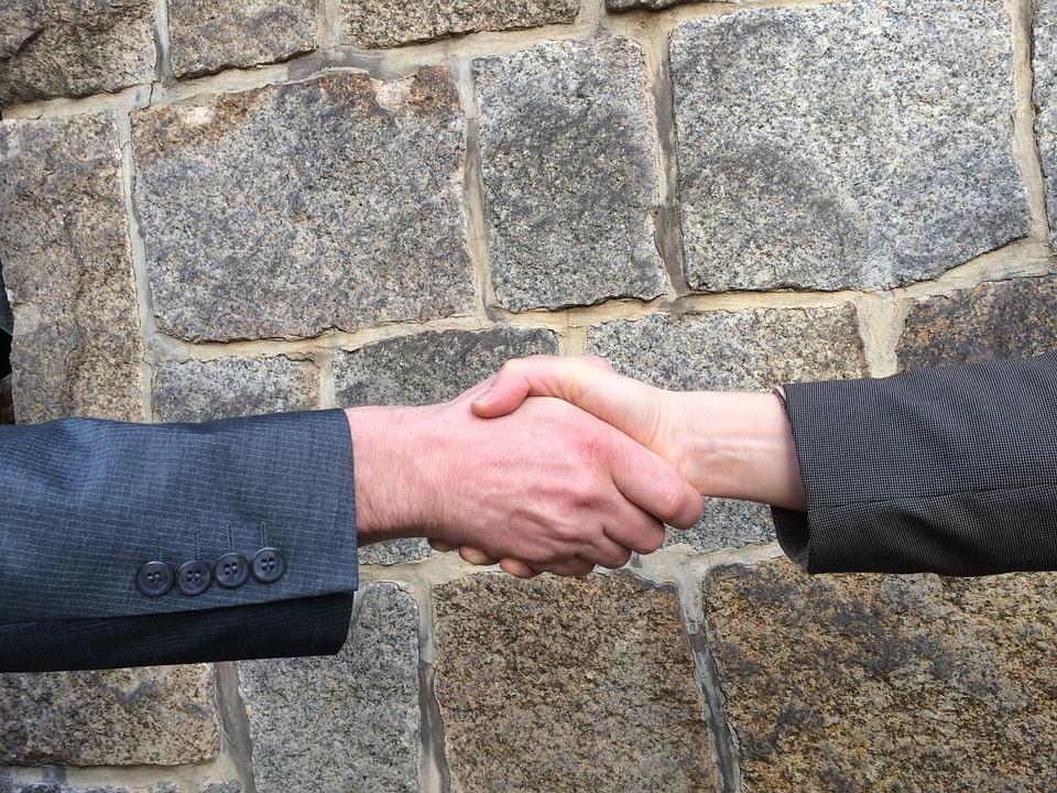 handshake, hands, shaking hands