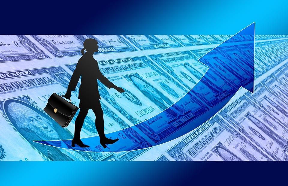 businesswoman, briefcase, success