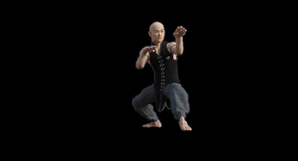 kung fu, martial, arts