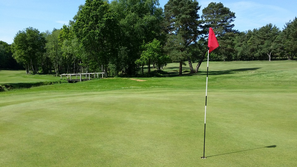 golf, golf course, green