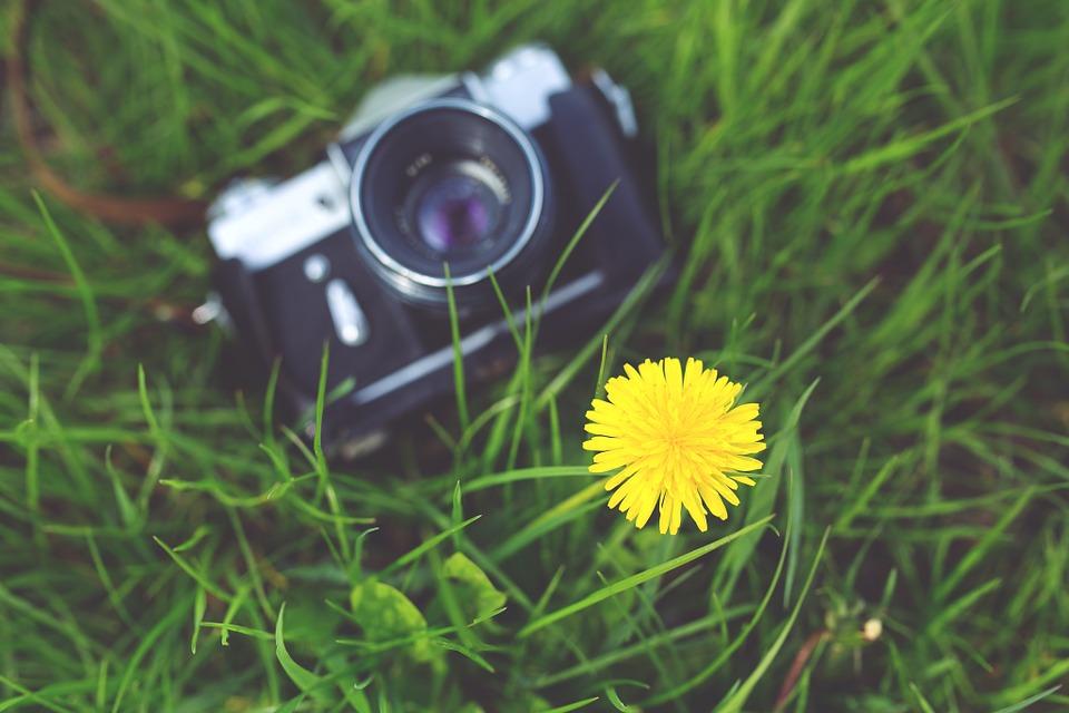 camera, old, zenit