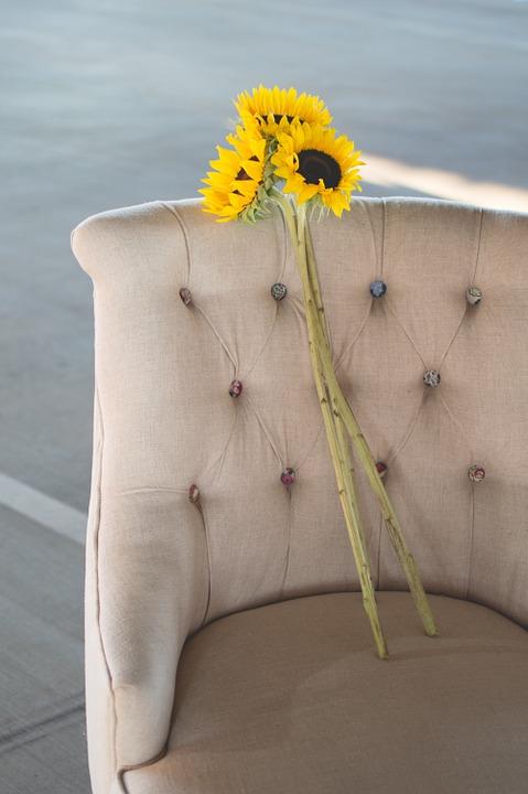 sunflowers, chair, seat