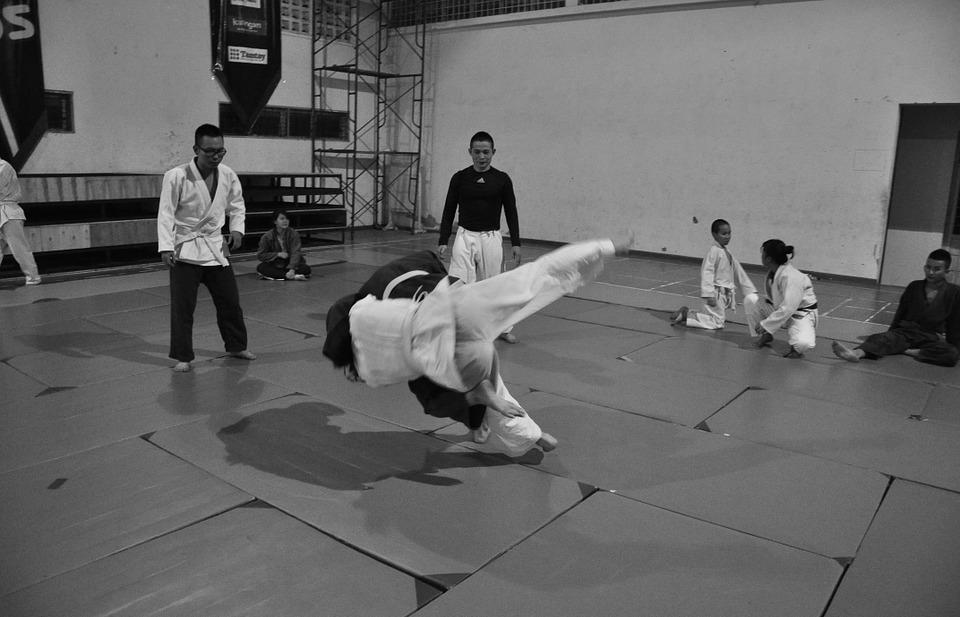 judo, martial arts, combat
