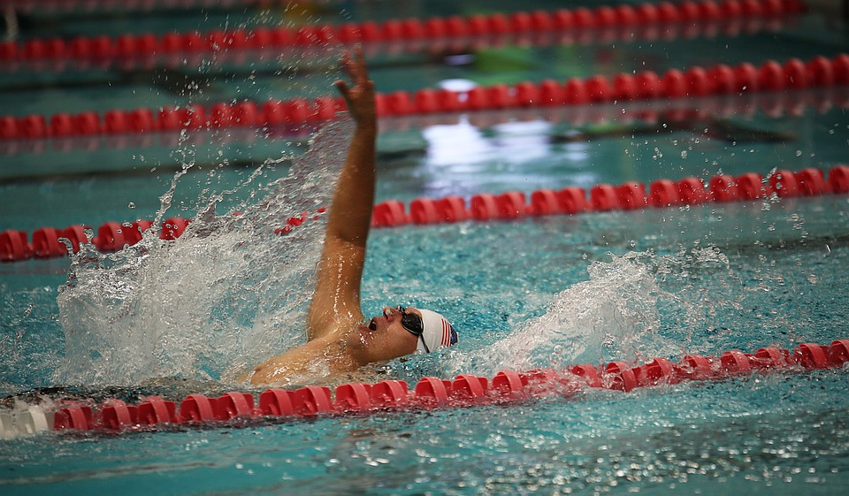 swimming, competition, swimmers