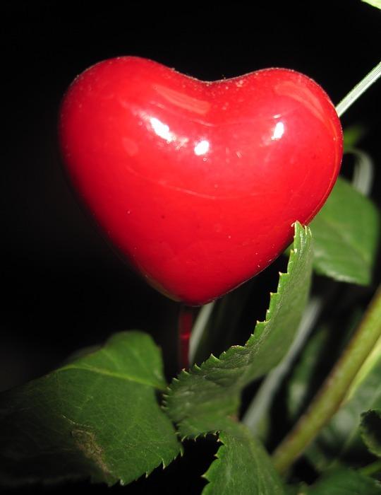mother day heart, herzchen, love