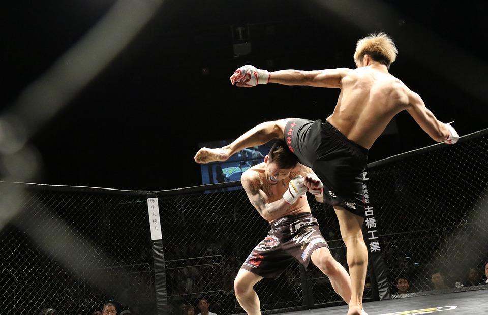 mixed martial arts, sport, kick