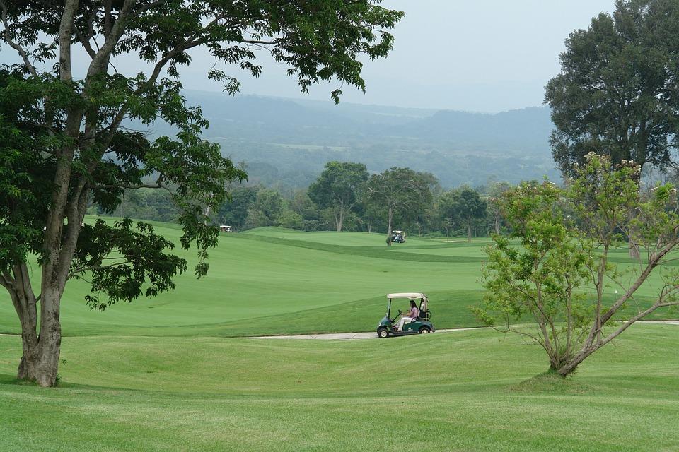 golf, golf buggies, sport