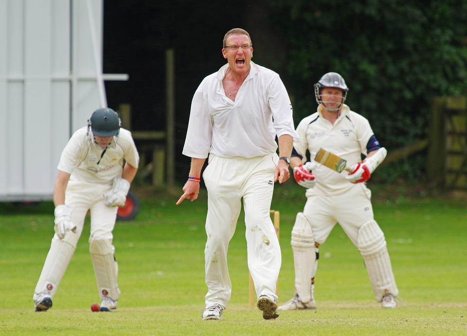 cricket, bowler, howzat