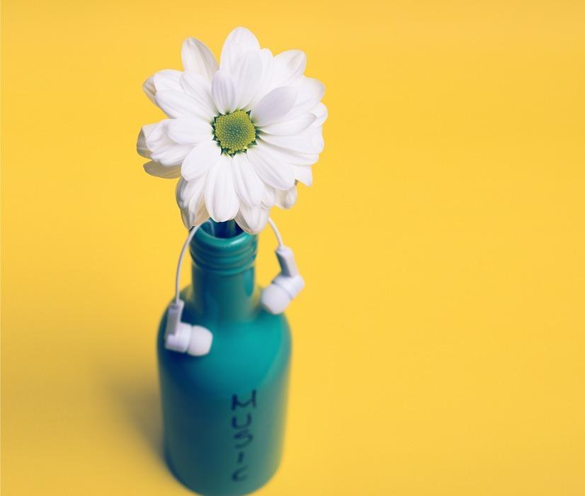 floral, jar, mug