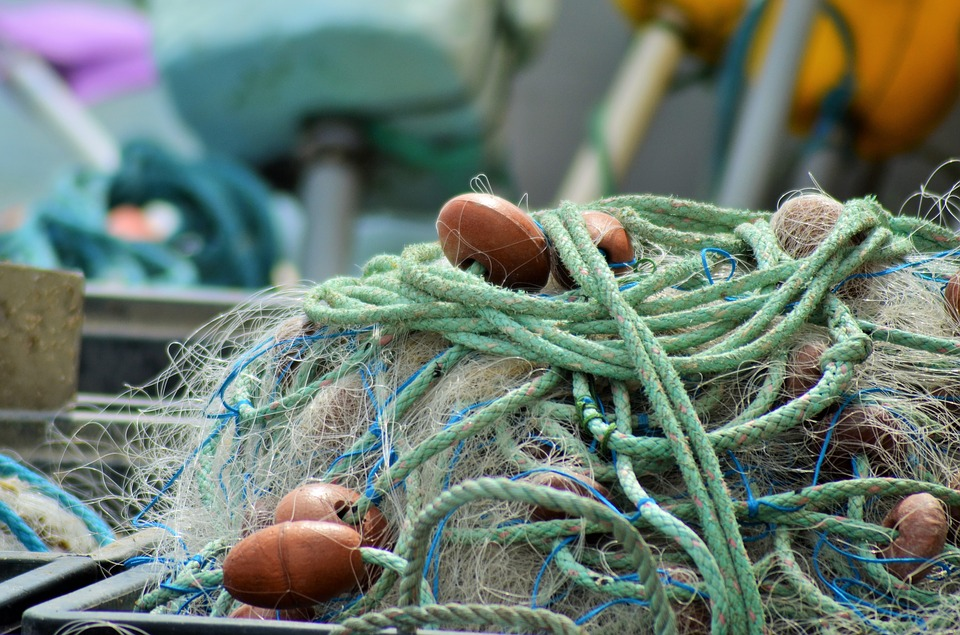 net, fishing nets, france