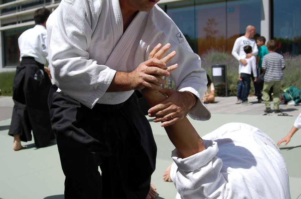 martial arts, aikido, sports