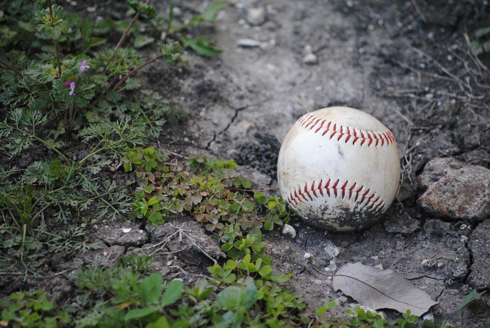 baseball, fallen, accessory