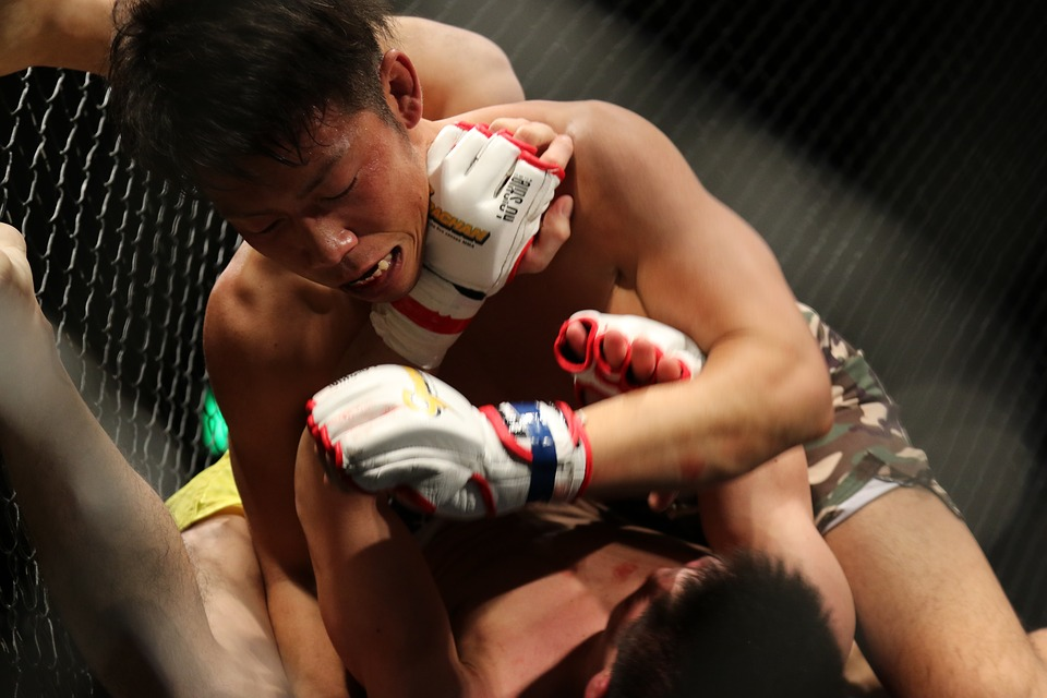 mma, grachan, mixed martial arts