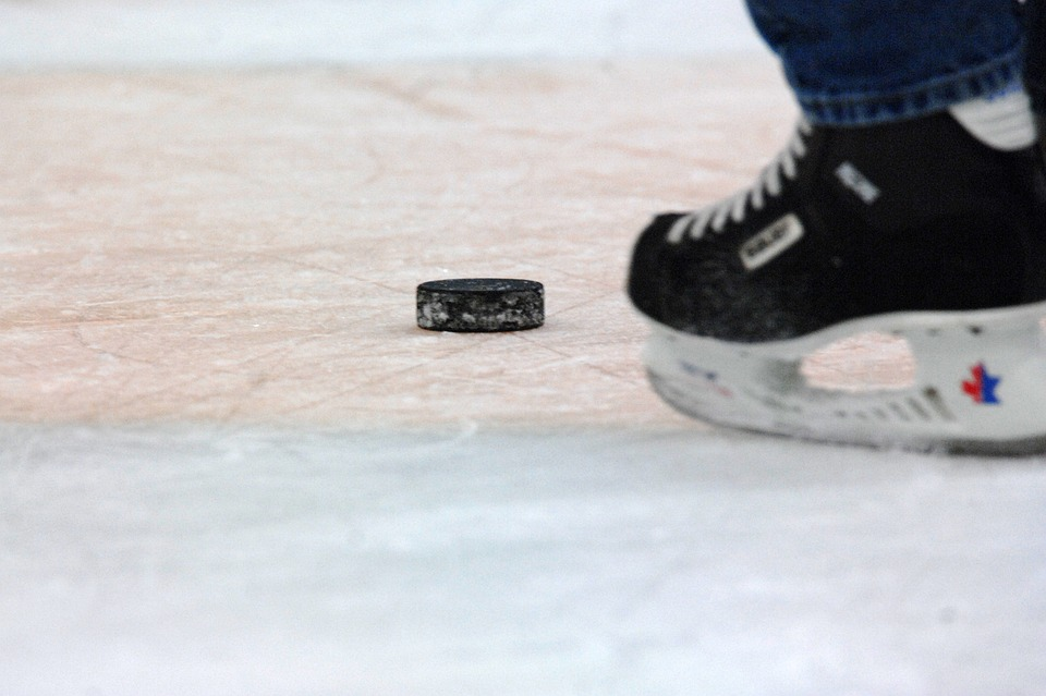 hockey puck, skater, ice