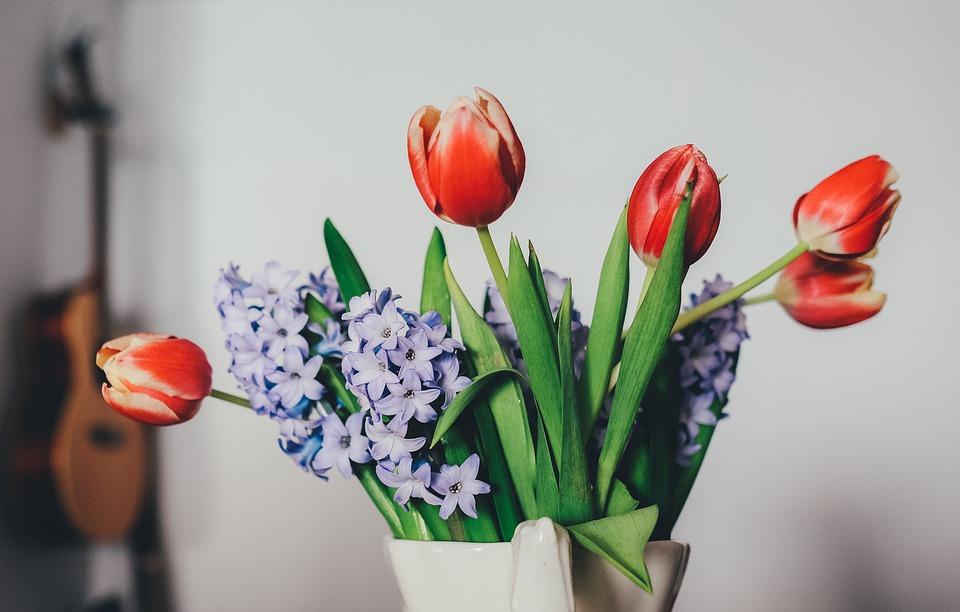 tulips, lilacs, guitar