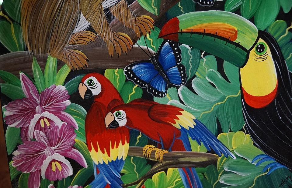 parrot, birds, colorful