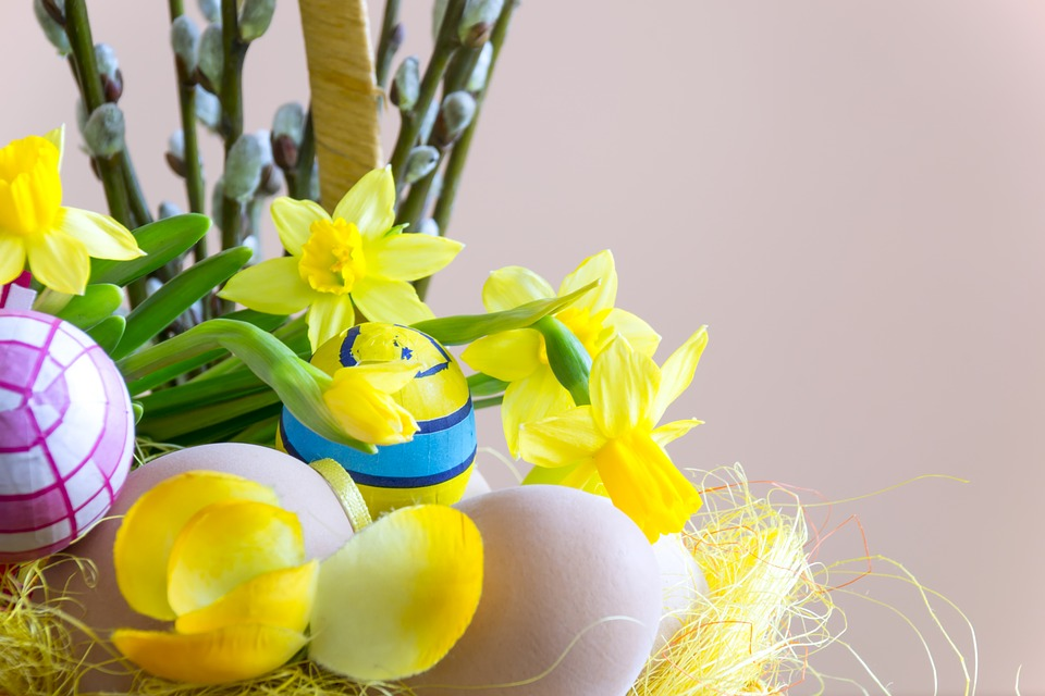 easter, flower, composition