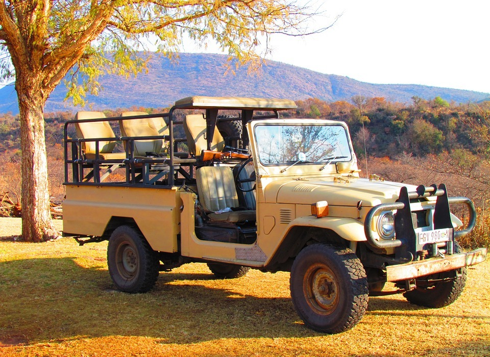 safari, jeep, vehicle